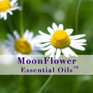 moonflower essential oils anti viral plus image