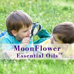 moonflower essential oils calm children