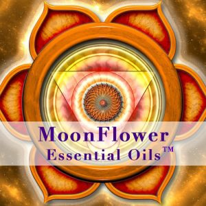 moonflower essential oils hormone balance image