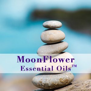 moonflower essential oils hormone balance plus image