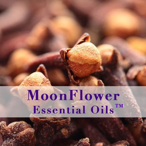 moonflower essential oils love your ears image