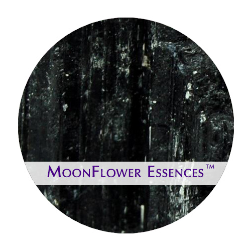 moonflower essences black tourmaline image