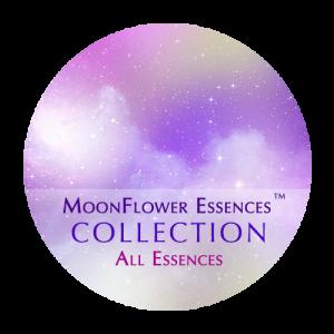 moonflower essences collection - all essences