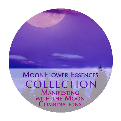 moonflower essences - collection - manifesting with the moon