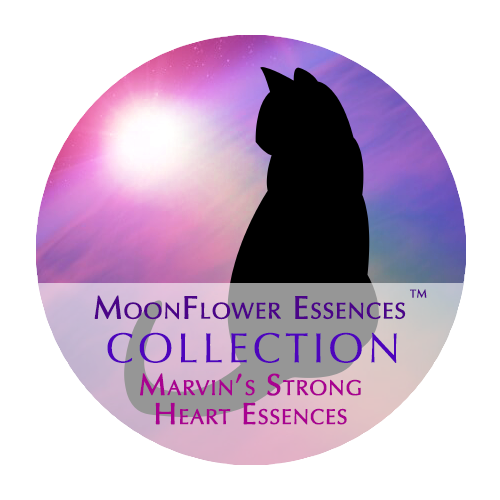 moonflower essences collection - marvins strong heart essences