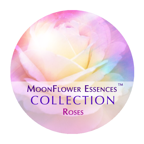 moonflower essences collection - roses