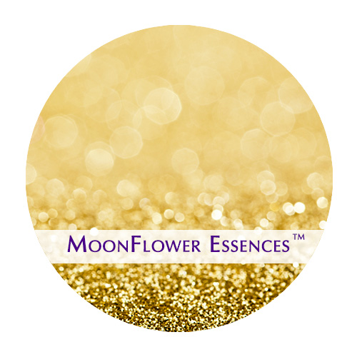 moonflower essences gold image