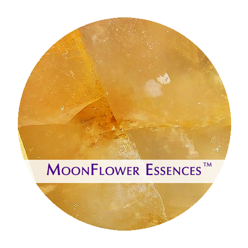 moonflower essences - golden quartz