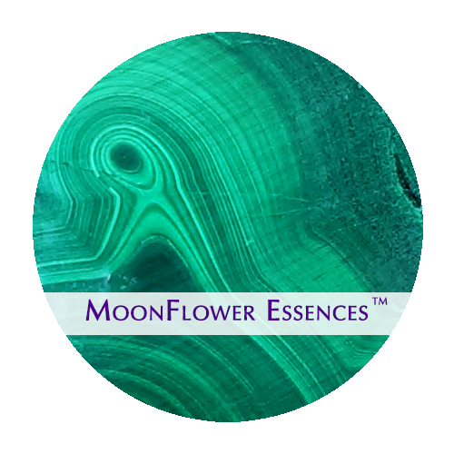 moonflower essences - malachite image