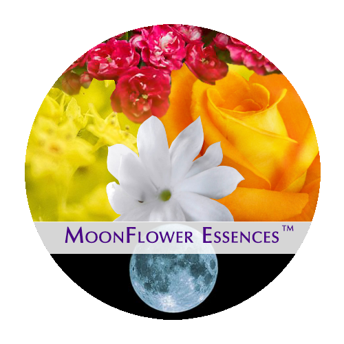 moonflower moon combination essences - fruit moon image