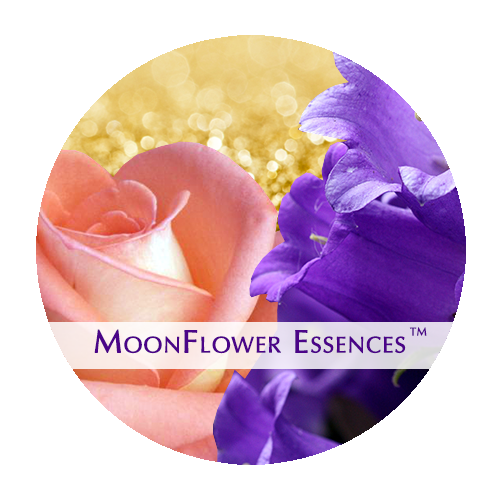 moonflower essences collection - sacred money archetype: connector