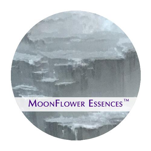 moonflower essence - selenite image