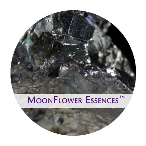 moonflower essences - silver image