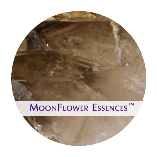 moonflower essence - smokey quartz image