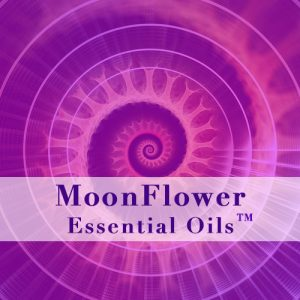 moonflower essences - panacea plus