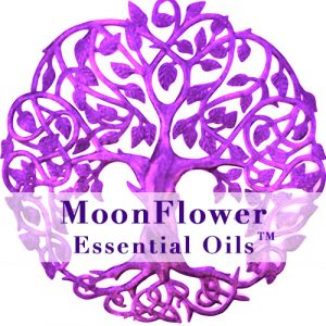 moonflower essential oils pregnancy and well being image