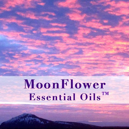 moonflower essential oils tummy calm image