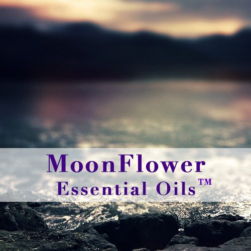 moonflower essential oils urinary calm image
