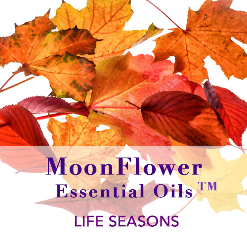 moonflower essential oils category image for life seasons