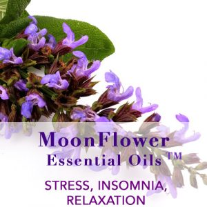 Essential Oils Blends for Stress, Insomnia and Relaxation