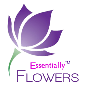 essentially flowers logo image