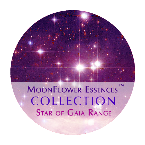 star of gaia range image