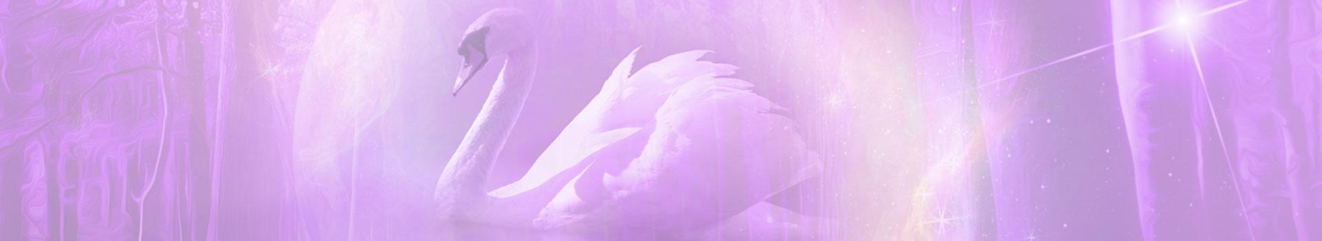 swan-centered-banner-1920x350